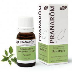 O mais potente contra vírus! | Respiração - Defesas naturais - Sanitização - Difusão atmosférica - Equilíbrio emocional