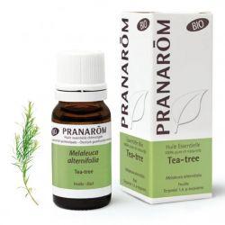 O óleo essencial anti-bacteriano por excelência. Também é antiviral. 100% puro e biológico.