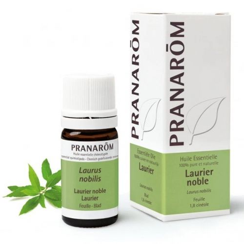 O óleo essencial de louro nobre promove a resistência natural do corpo.