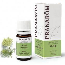 Notavelmente eficaz no tratamento de asma e alergias. Suprime espasmos, relaxa o músculo liso, interrompe a resposta alérgica.   Provavelmente o anti-espasmódico e anti-histamínico mais forte dentro da aromaterapia (musculatura lisa).