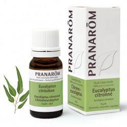 Dores reumáticas, inflamações na garganta, descongestionante das vias respiratórias, tosse e bronquite. Óleo essencial 100% puro e biológico