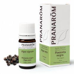 O óleo essencial de pimenta preta possui forte propriedade analgésica e é indicado para artrite, reumatismo, dores musculares, articulações e dor de cabeça. Bactericida, melhora a circulação e a digestão. Ajuda a deixar de fumar.
