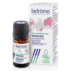 Poderoso antisséptico e antibiótico. Fortalece o sistema imunitário
