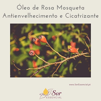 Óleo Rosa Mosqueta antienvelhecimento e cicatrizante